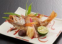 【日本海二大味覚対決】のどぐろVS南蛮エビ饗宴プラン